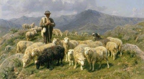 À mes moutons, je donne la vie éternelle