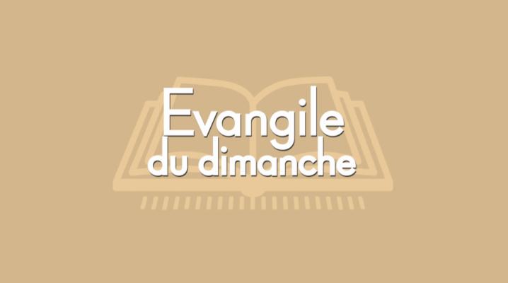 Évangile du dimanche logo podcasts