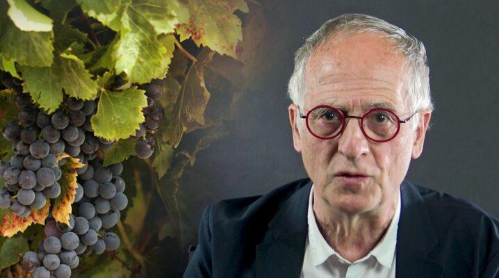 Comment comprendre l'image des sarments attachés à la vigne ?